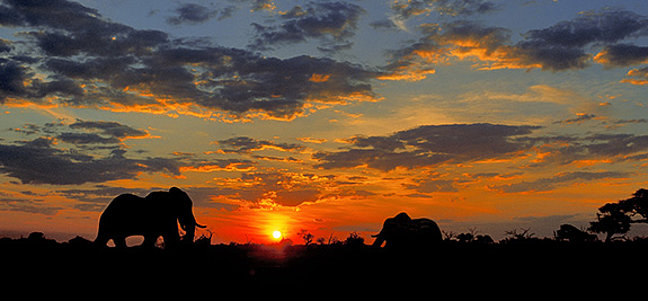 Focuswelten Namibia
