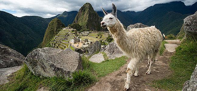 Südamerika, von Galapagos bis Patagonien